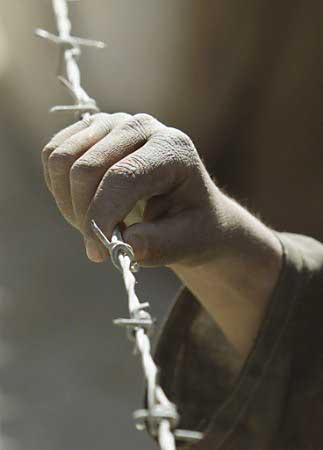 hand-barbedwire